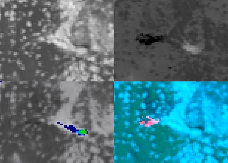 POES AVHRR Visible (upper left), Shortwave Infrared (upper right), Infrared Window (lower left) and false-color RGB (lower right) images